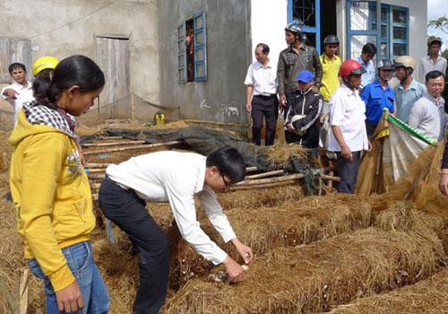 Trung tâm Dạy nghề và Hỗ trợ nông dân đổi tên mới