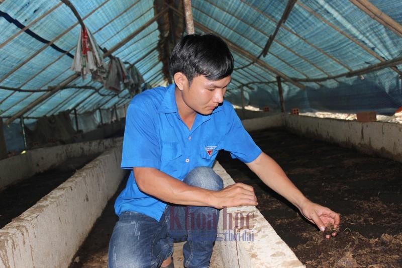 Chàng kỹ sư trẻ Mai Thế Tâm giới thiệu quy trình nuôi trùn quế