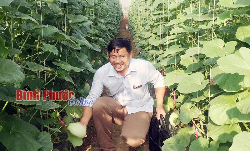 Anh Lê Anh Đức trong vườn dưa lưới của mình tại xã Thanh An (Hớn Quản)